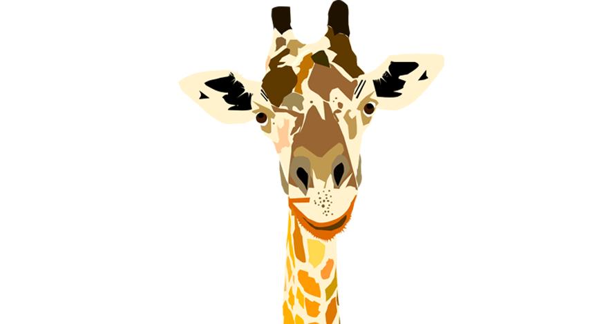illustrator girafa em desenho digital vetorizado